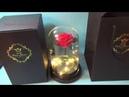 Красивая живая роза в колбе С подсветкой в подарочной упаковке