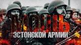 Мощь эстонской армии (Руслан Осташко)
