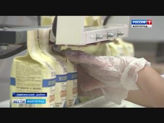 В Урюпинском районе модернизируют уникальное производство лекарственных трав и масел