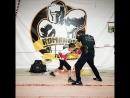 [PVK] Romanov Team Boxing Club