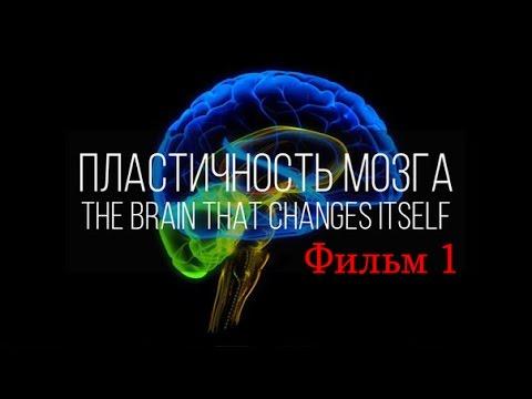 Мозг изменяющий себя сам Нейропластичность Мозга фильм 1