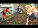 Высадка цветов в детском саду «Родничок»