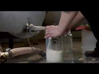 Rotten.S01E05.720p.ColdFilm