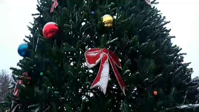 Открытие новогодней ёлки вГусе (vk.com/vguse)