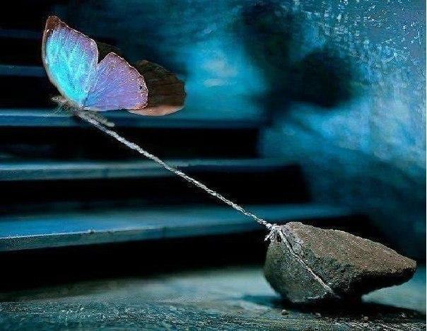 Ніколи не кажи «здаюся». Завжди повторюй: «Я можу, і я буду намагатися, поки не...