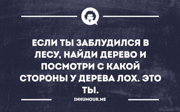 https://pp.vk.me/c543108/v543108317/1cda4/a8-83nzUsWI.jpg