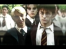 DracoMalfoy HermioneGrenger Harry Potter vine