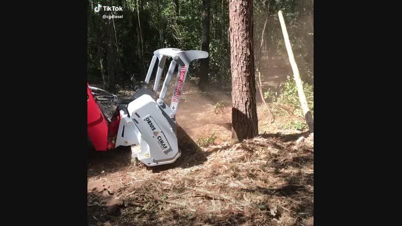 Современная чудо техника для рубки леса.mp4