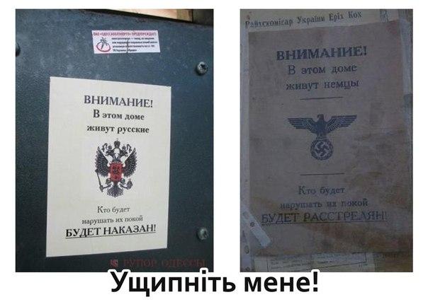 Почти 80% граждан Украины помогали армии и переселенцам - Цензор.НЕТ 3637