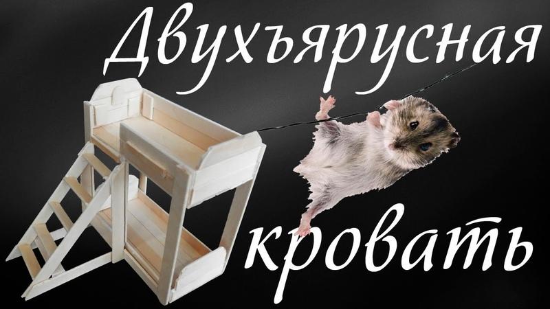 Своими руками Двухъярусная кровать Мебель для хомяка