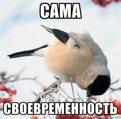 http://cs405329.userapi.com/v405329490/7573/owdMKEtnFTk.jpg