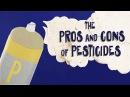 Do we really need pesticides Fernan Pérez Gálvez