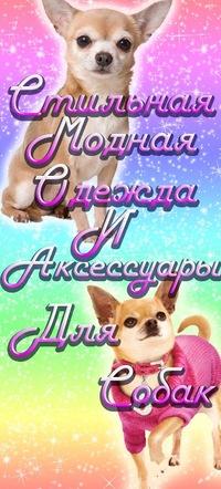 Женские Костюмы С Жилеткой