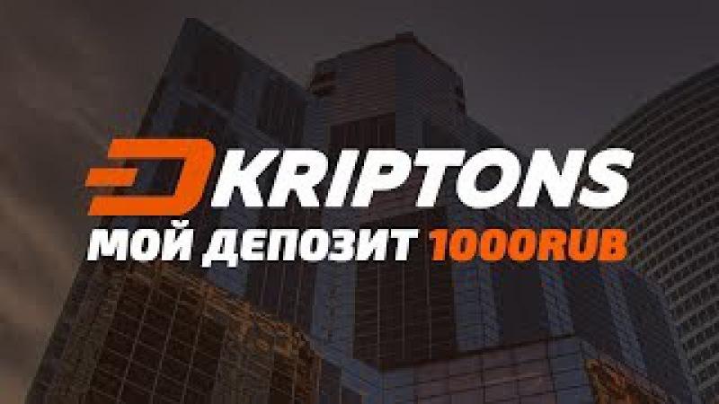 Хайп проекты 2017 ярославль