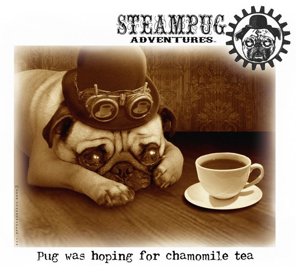 Steampug Adventures by Doctor Grymm (Фото 2)