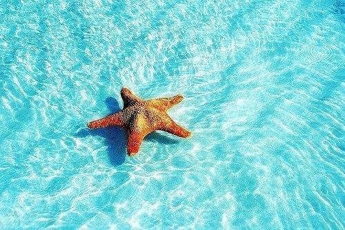Море схем из бисера..........