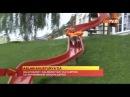 FUTBOL Aslan Avusturya'da