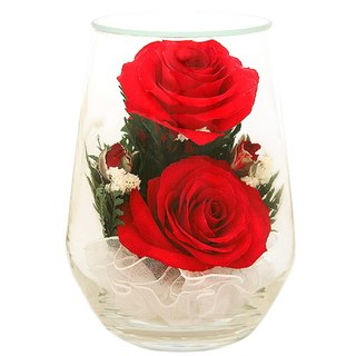 Цветы в вакууме где купить в спб купить подставки на стену под цветы