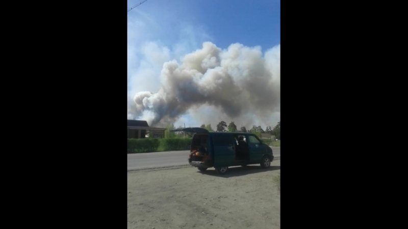 В Семее лес горит (Las Lynch)