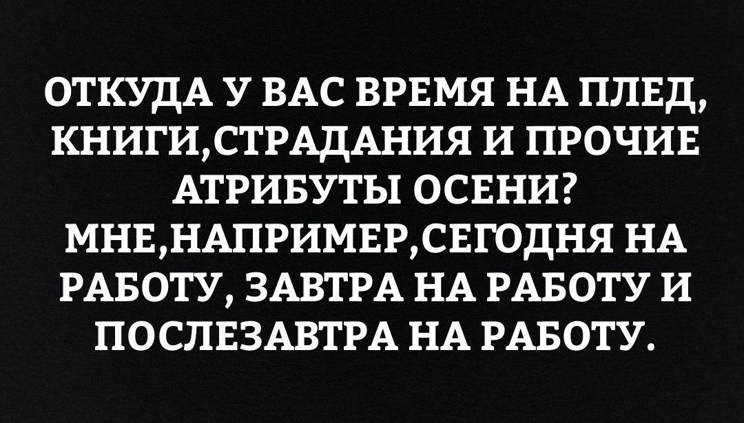 https://cs7062.vk.me/c543103/v543103564/237af/iTqaQo7SjB0.jpg