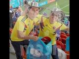 Болельщики разных стран показали пример чистоты в России