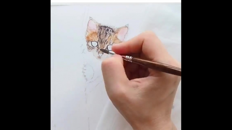 """Little kitty in a tree saying """"Booh!""""😋😉😝 I'm falling deeper and deeper in love with @ escoda_brushes Versatil - it's round, it's"""