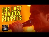 The Last Shadow Puppets Miracle Aligner