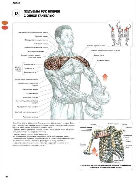 стероиды для мышц новосибирск