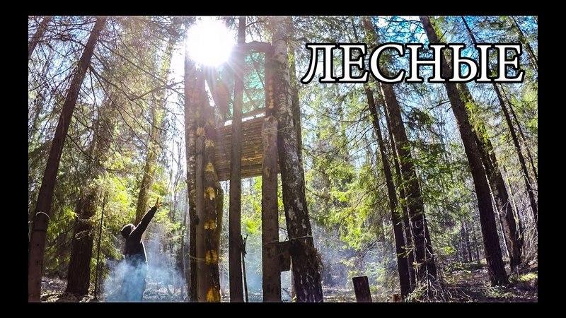 ВЕРНУЛИСЬ В ДОМ НА ДЕРЕВЕ ПОСЛЕ СУРОВОЙ ЗИМЫ И ВОТ ЧТО ПОТОМ ПРОИЗОШЛО... | Bushcraft Tree Shelter