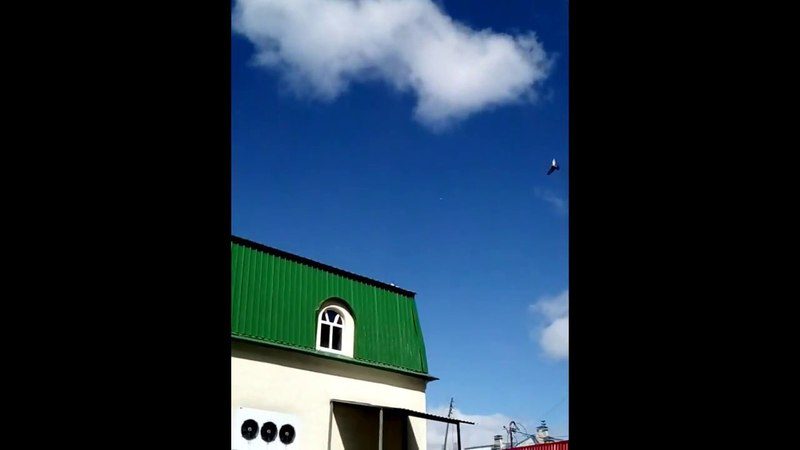 Химтрейлы -как должны летать самолеты.