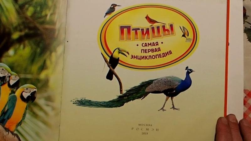ПОВОЗКА - Иванов В, Ярлыков В (аранжировка)