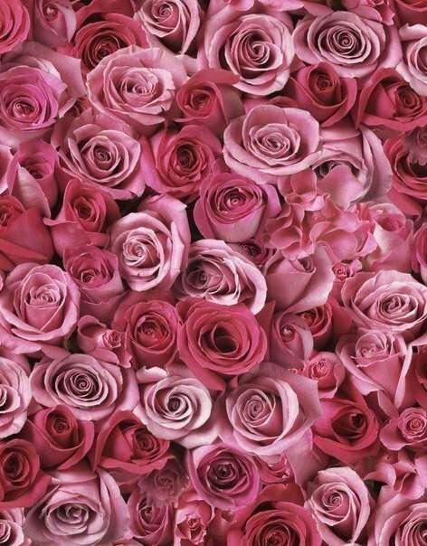 Восхитительное розовое :3