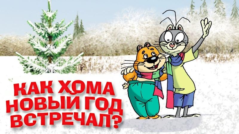 Как Хома Новый год встречал? Мультфильм «Удивительные приключения Хомы и Суслика»