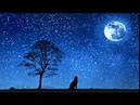Deep Sleep☆ Healing music・Piano・Calming music・Sleeping music・Soothing music・Relaxing music