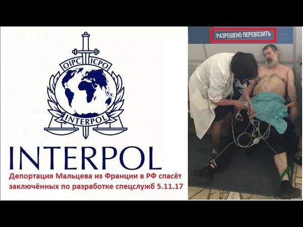 Депортация Мальцева из Франции в РФ спасёт узников провокации спецслужб 5.11.17