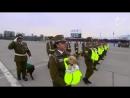 Чилийские полицейские щенки - самая милая вещь, которую вы увидите сегодня