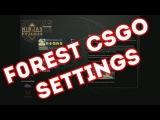 NiP.f0rest CSGO SETTINGS (VIDEO, MOUSE, CONFIG ETC)