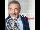 Karel Gott - Na sedm strun budu hrát (2018)