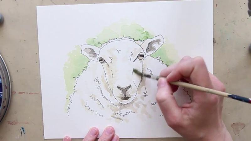 Sheep Watercolour Speedpaint