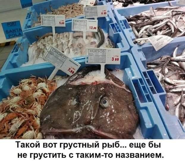 Грустный рыб...