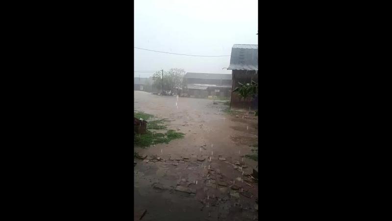 долгожданный дождь )