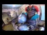 Как мы делаем шлемы