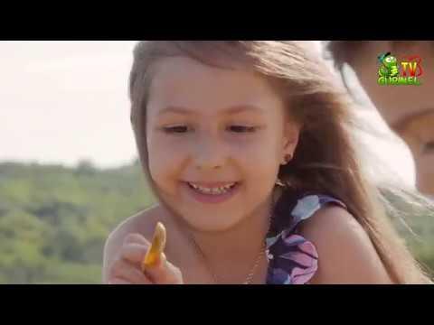 Vlăduț Ryana - În parcul de animații (DoReMi-Show)