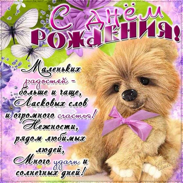 http://cs618122.vk.me/v618122629/8c65/sZxaUhM343M.jpg