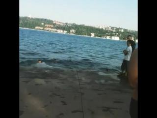 Emirgan Sahilde Yüzmek (5)