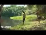 Крокодил съел девушку Жесть
