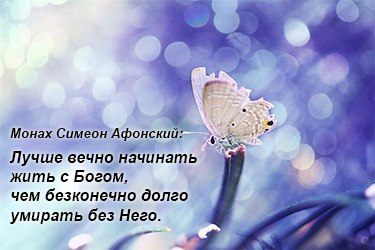 http://cs408926.vk.me/v408926721/420b/Tt4TeuEsioU.jpg