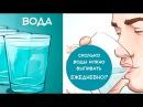 Вот Сколько Воды Вам Нужно Выпивать Ежедневно, чтобы СОХРАНИТЬ ЗДОРОВЬЕ!