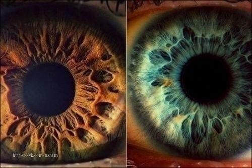 Зеленые глаза могут понравиться.