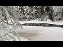 Зима под Лугой Из телецикла Музыка и мир